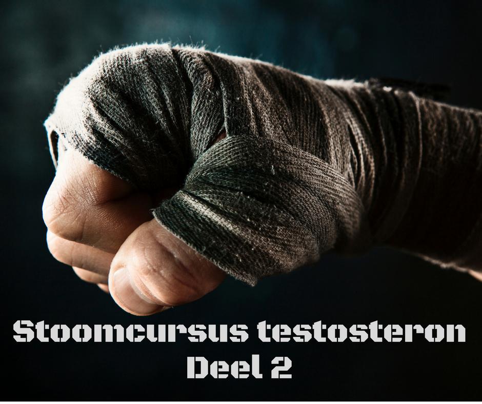 testosteron, stoomcursus