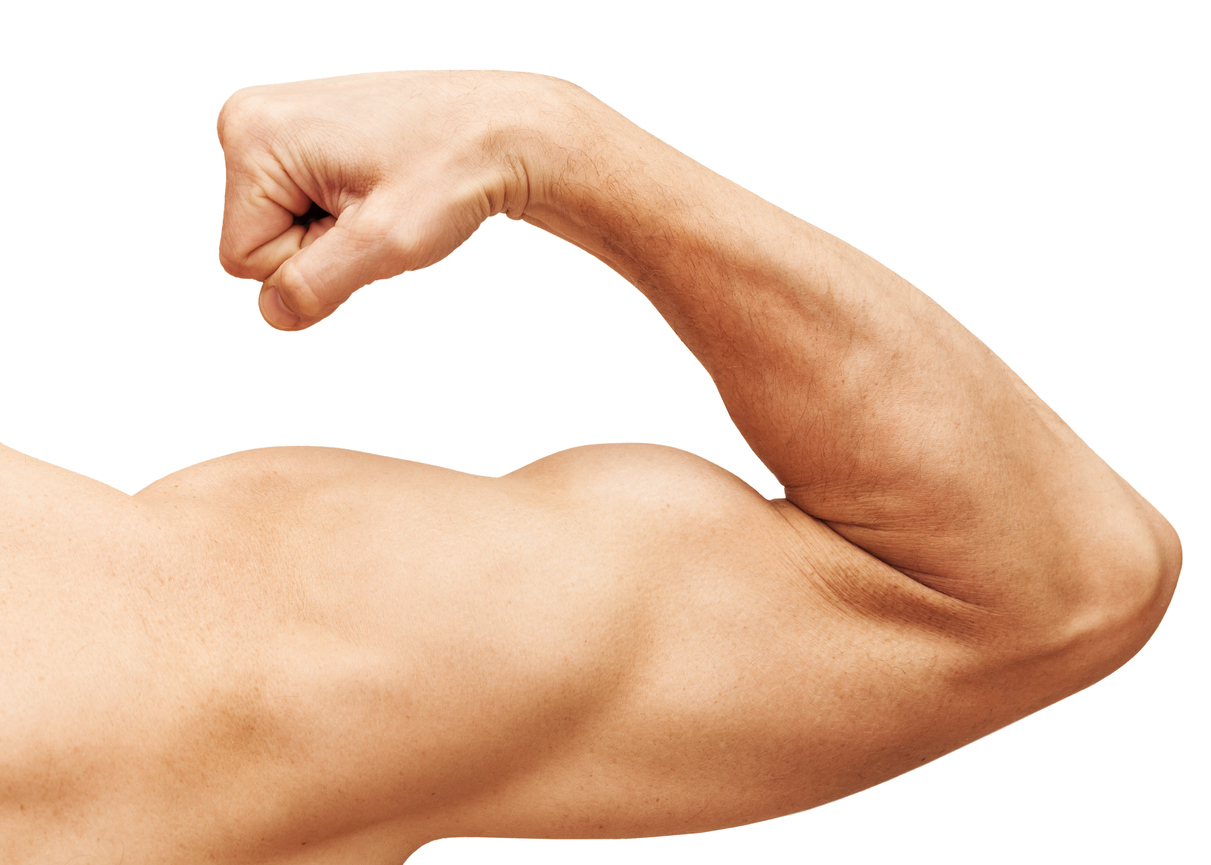 Bodybuidsupplement alfa-ketoglutaraat verlengt leven