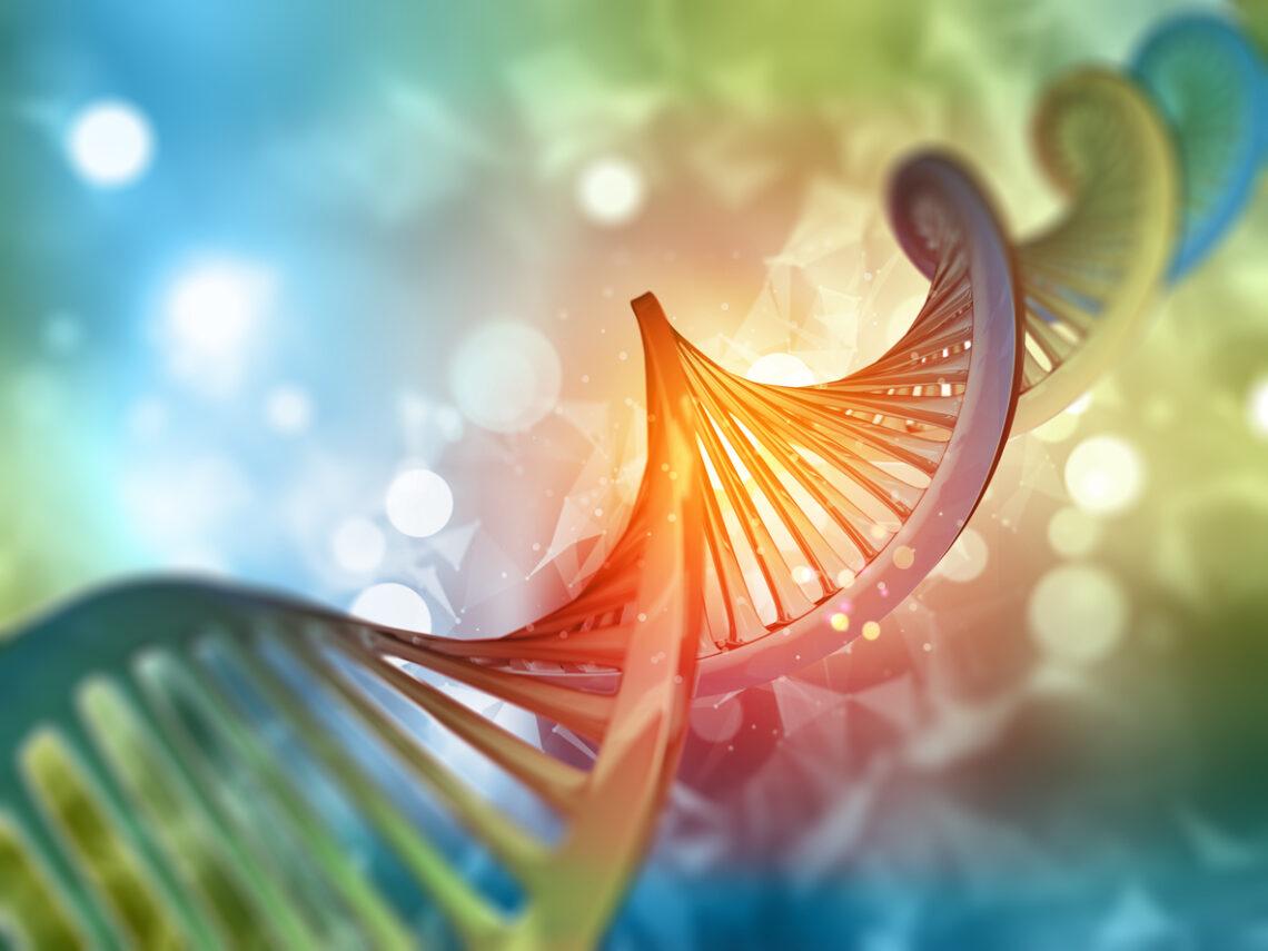 Test je epigenetische leeftijd